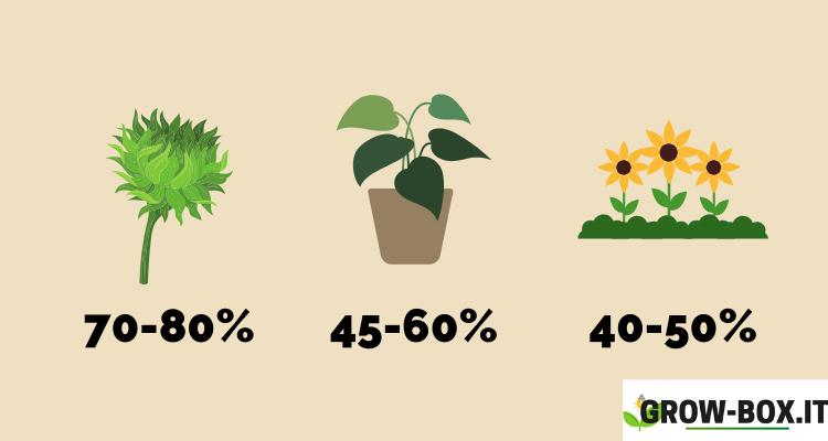 livelli umidità grow box
