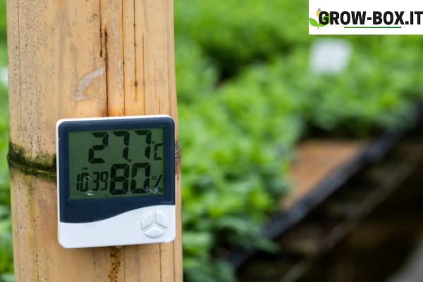temperatura della grow box